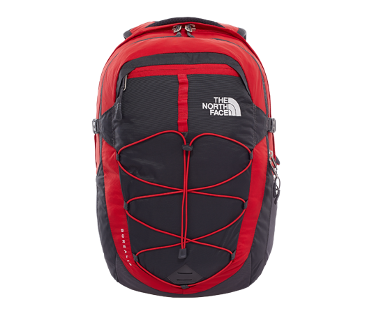 the north face borealis backpack image