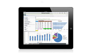 ipad for business use image