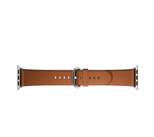 apple 42mm classic buckle image