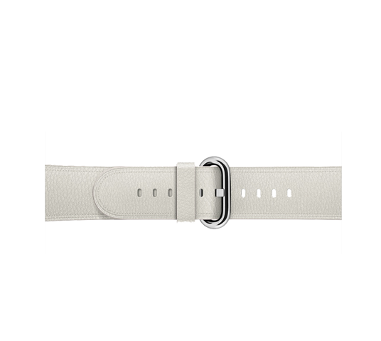 apple 38mm classic buckle image