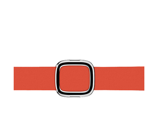 apple 38mm modern buckle red image